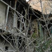 La maison de Sayad Abdelmalek suite
